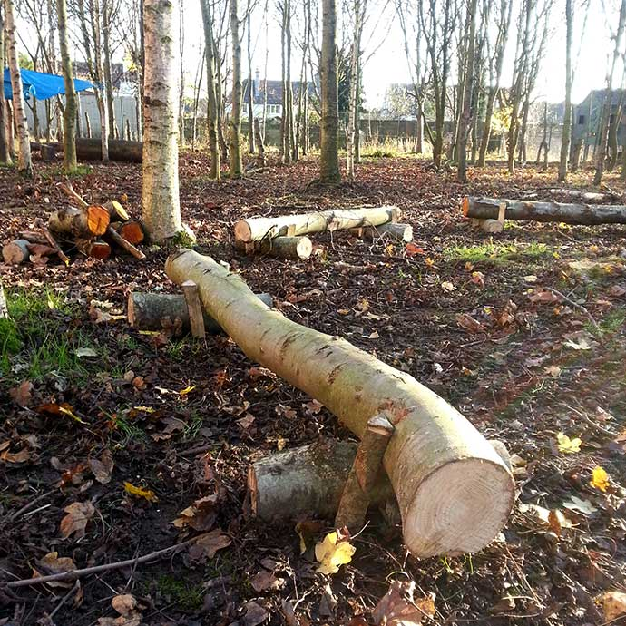 Forest School Training & Environmental Management - log benches